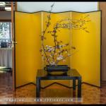 canberra_jp_embassy_04