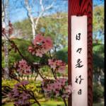canberra_jp_embassy_26