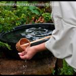 leura_tea_ceremony_04