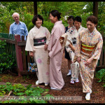 leura_tea_ceremony_06